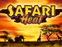 Safari Heat в зале Вулкан